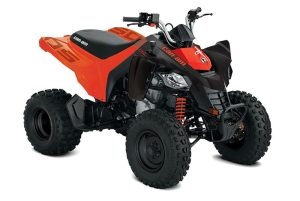 can-am-ds-250