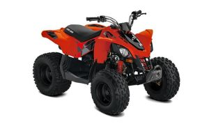 can-am-ds-90